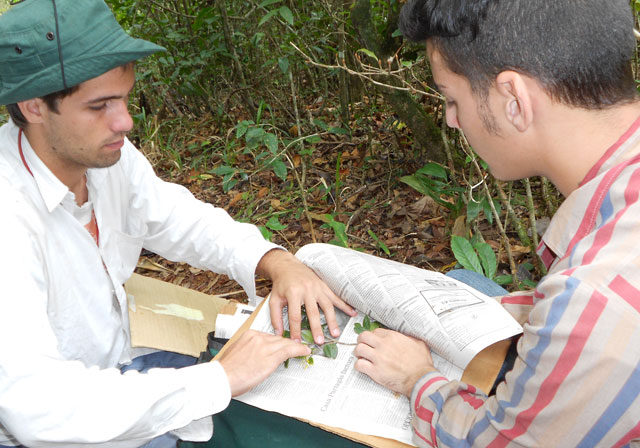 Rapid_Plant_ID_conservation_course